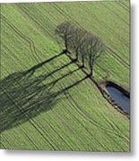 Three Trees, Montaigu Metal Print