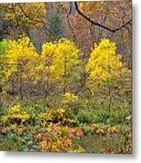Three Yellow Trees Metal Print
