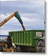 Threshing The Barley Metal Print