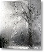 Through Glass -- A Tree In Winter Metal Print