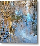 Through My Eyes Metal Print by Delona Seserman