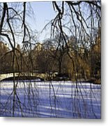 Through The Branches 1 - Central Park - Nyc Metal Print
