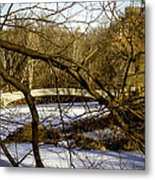 Through The Branches 2 - Central Park - Nyc Metal Print