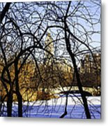 Through The Branches 3 - Central Park - Nyc Metal Print