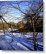 Through The Branches 4 - Central Park - Nyc Metal Print