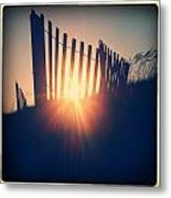 Through The Fence Metal Print