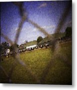 Through The Fence Water Color Metal Print