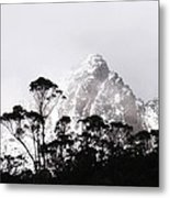 Through The Trees Come Mountains Metal Print by Lee Stickels