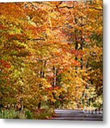 Through The Woods By D. Perry Lawrence Metal Print