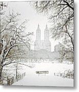 Through Winter Trees - Central Park - New York City Metal Print