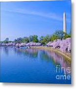 Tidal Basin And Washington Monument With Cherry Blossoms Metal Print