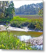 Tidal Creek In The Savannah Metal Print