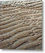 Tidal Footprint Metal Print
