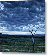 Tidal Marsh View Metal Print