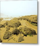 Tidepool Walkways Metal Print