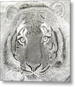 Tiger #1 Metal Print