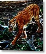 Tiger 4217 - F Metal Print