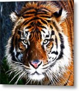 Tiger Close Up Metal Print