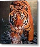 Tiger Crossing Water Metal Print