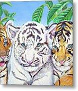 Tiger Cubs Metal Print