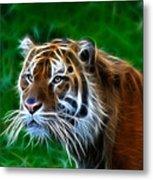 Tiger Dream Metal Print