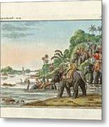 Tiger Hunting On An Indian River Metal Print
