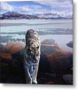 Tiger In A Lake Metal Print