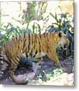 Tiger In Crayon Metal Print by Judy  Waller