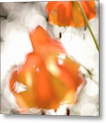 Tiger Lillies Near The Rogue Wild River Metal Print