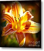 Tiger Lily Flower Metal Print