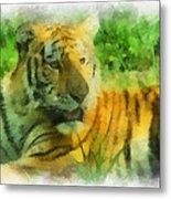 Tiger Resting Photo Art 01 Metal Print