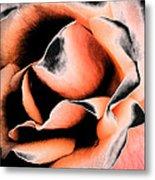 Tigers And Roses Metal Print