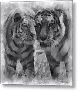 Tigers Photo Art 01 Metal Print