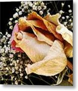 Tightly Wrapped Petals Metal Print by Tanya Jacobson-Smith