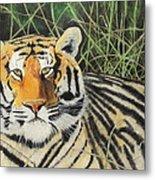 Tigress Metal Print