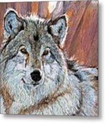 Timber Wolf Metal Print