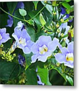 Time For Spring - Floral Art By Sharon Cummings Metal Print