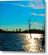 Time In The Sun Metal Print