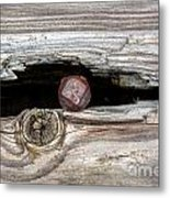 Time Rust Rot Metal Print