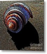 Time To Settle In Metal Print by Scott Allison