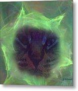 Time Warp Cat Metal Print