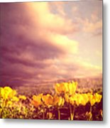 Tiny Flowers Metal Print by Bob Orsillo