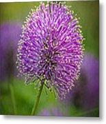 Tiny Purple Wildflower II Metal Print