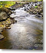 Tiny Rapids At The Bend  Metal Print
