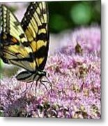Tip Toe Through The Flowers Metal Print