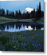 Tipsoo Reflection Tranquility Metal Print