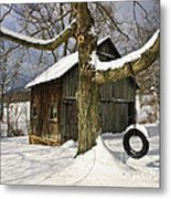 Tire Swing Shed Metal Print by Timothy Flanigan