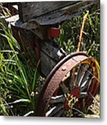 Tireless Metal Print