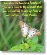 To Become A Butterfly Metal Print