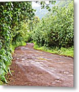To Seclusion Metal Print